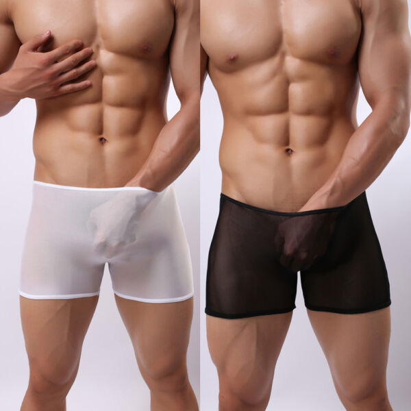 Men's Breathable Mesh Boxer Briefs Transparent Shorts Trunks Underwear Underpant
