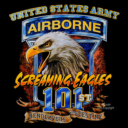 img-T-Shirt Airborne Us Army Special Forces Special Unit Air Force Eagle 3171