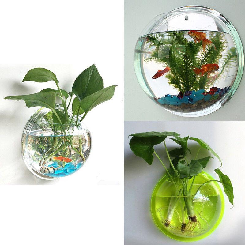 New Wall Mounted Fish Tank Bowl Bubble Aquarium Hanging