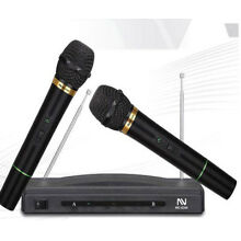 Wireless Professional Microphone System Dual Handheld 2 x Mic Cordless Receiver