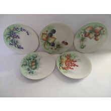 Antique Porcelain Fruit Pattern Plates Set of 5 Hand Painted SIGNED