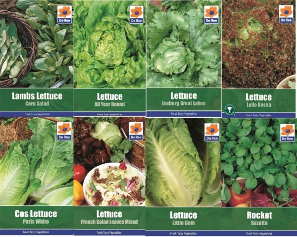 Vegetable Unwins Pictorial Packet 300 Seeds Lettuce Lamb/'s Trophy