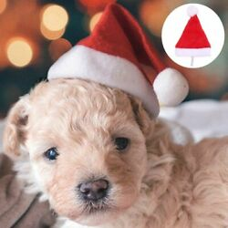 1pc Santa Hat For Dogs Pet Supplies Cute Xmas Christmas Winter Cosplay Present