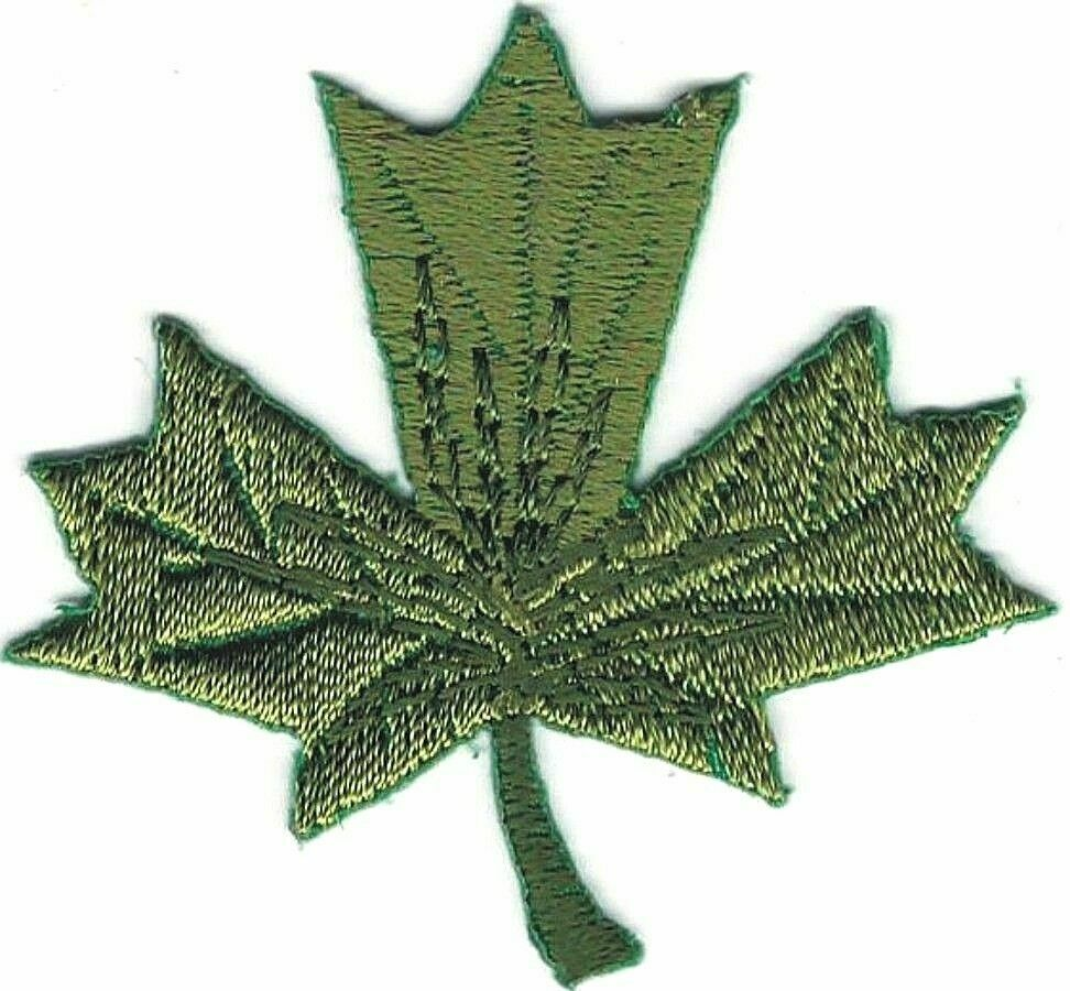 Green maple leaf embroidery applique fall autumn leaves ebay