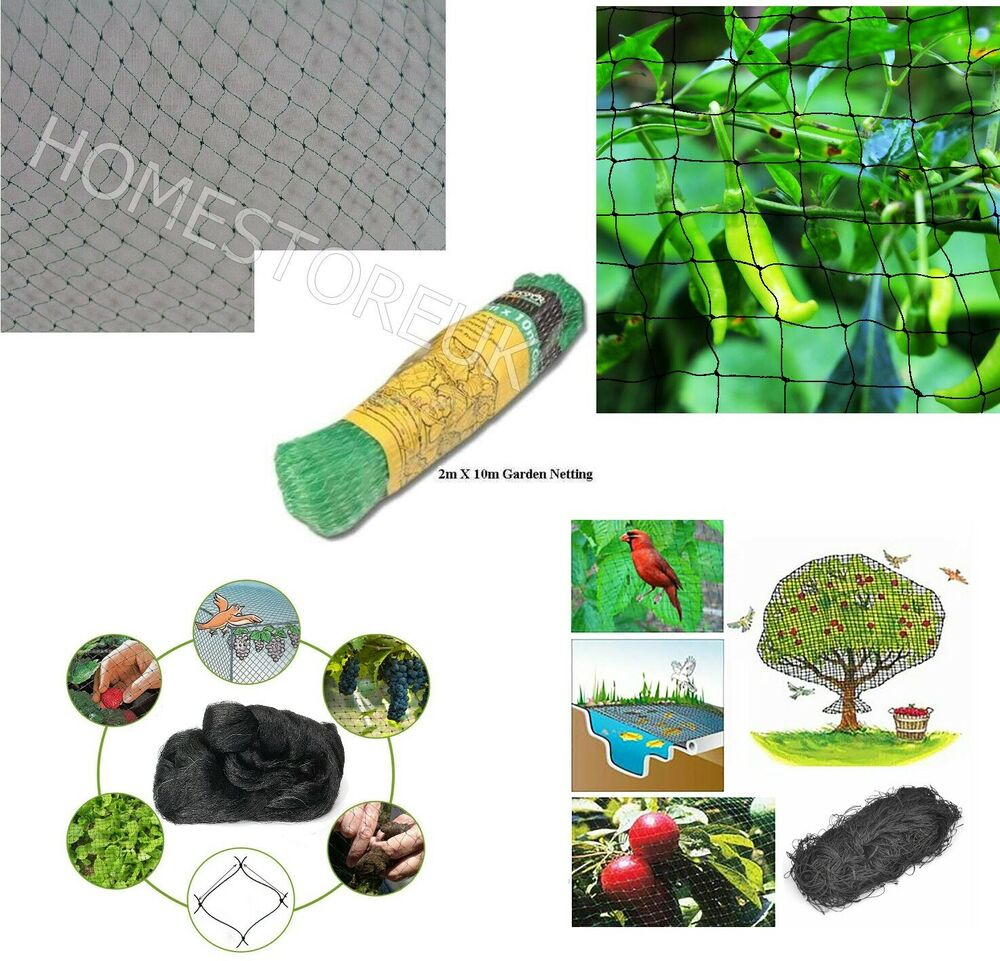 2m x 10m garden netting multipurpose fruits vegetable veg pond anti bird net ebay. Black Bedroom Furniture Sets. Home Design Ideas