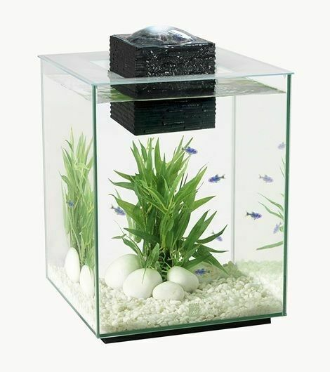 Fluval chi 19l aquarium with led light lighting latest for Fish tank lighting
