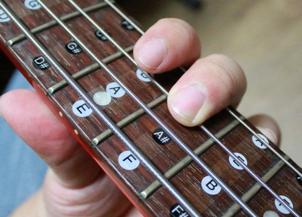 xchord melody scale 4 string bass guitar sticker xbg4 ebay. Black Bedroom Furniture Sets. Home Design Ideas