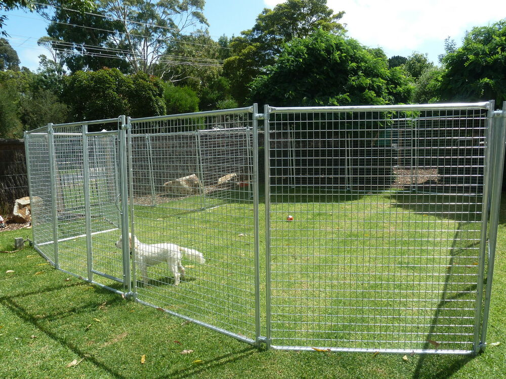 Large pet enclosuredog kenneldog enclosuredog run for Dog run cage enclosure