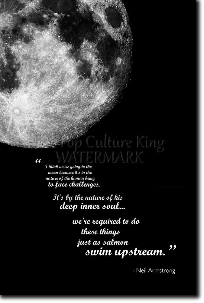 apollo 11 neil armstrong quote - photo #19