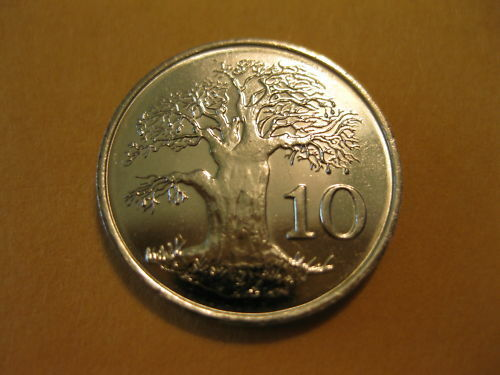 1999 Zimbabwe Coin Quot Africa Baobab Tree Quot 10 Cents Super Nice Coin Ebay