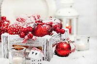 Winter Candy Apple Fragrance Candle Simmer Oil F.O. 1 X 16 Ounce Uncut