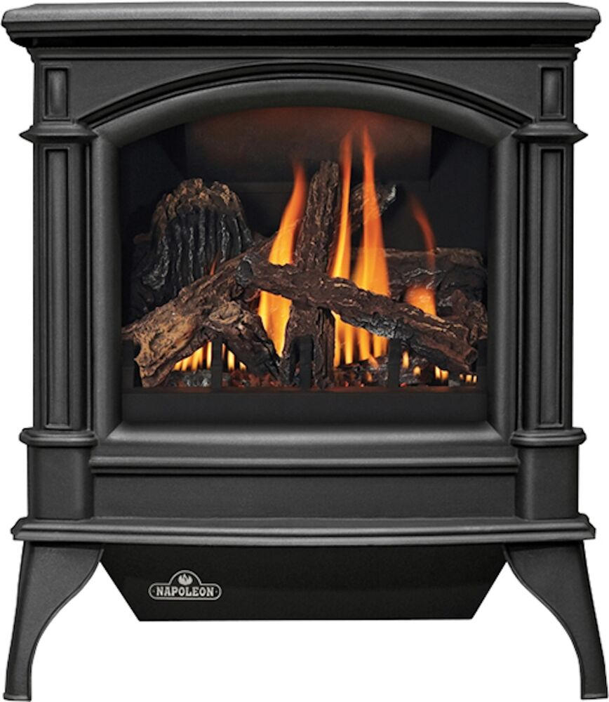 Napoleon Gas Fireplace Gds60 Stove Free Standing Cast Iron Direct Vent Large Ebay