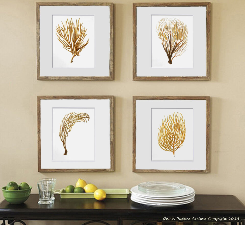 Beach Coastal Wall Decor : Beach decor wall art set of unframed sea coral prints
