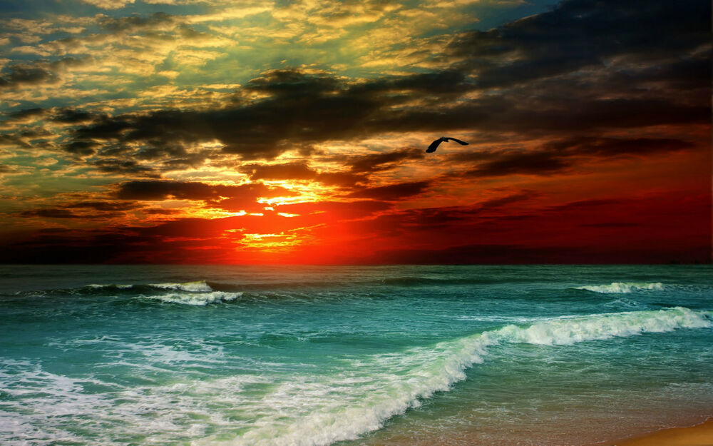Beach And Ocean Storm: Beautiful Ocean Sunset (Picture Poster
