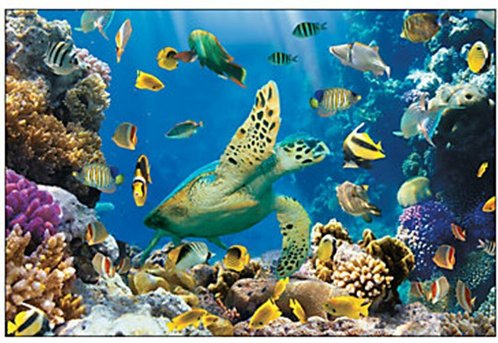 9 39 undersea fish wall mural scene setter photo op backdrop for The fish 95 9