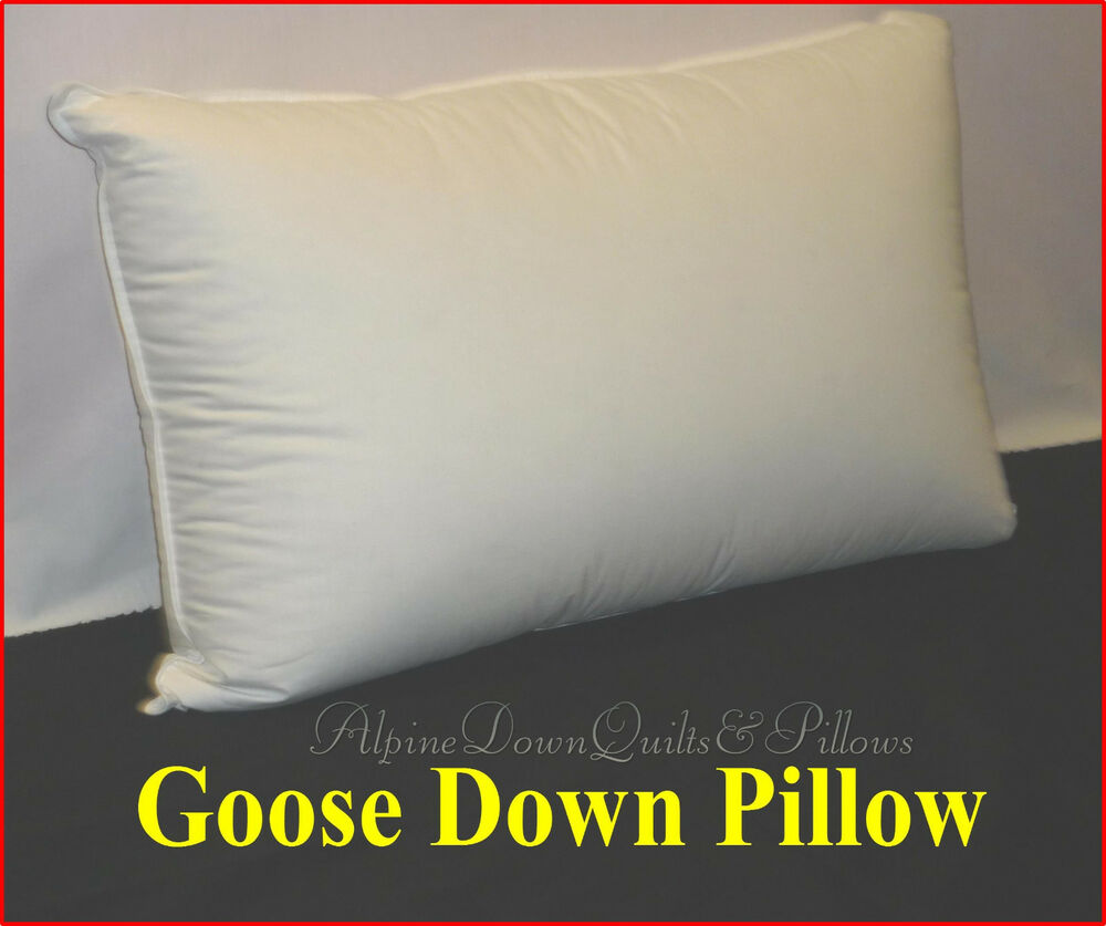 1 Standard Pillow 70 Goose Down 30 Goose Feathers 100