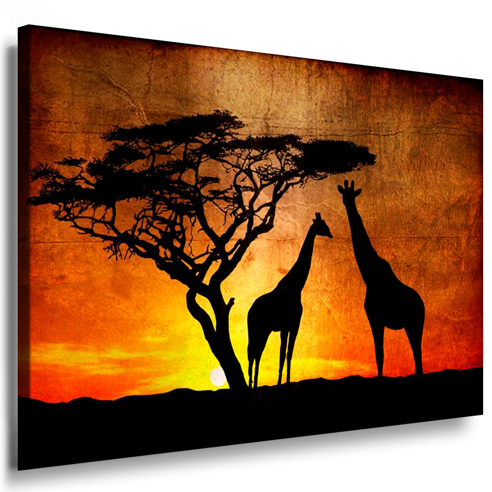 leinwand bild n565 afrika giraffe bilder mit keilrahmen kunstdruck kein poster ebay. Black Bedroom Furniture Sets. Home Design Ideas