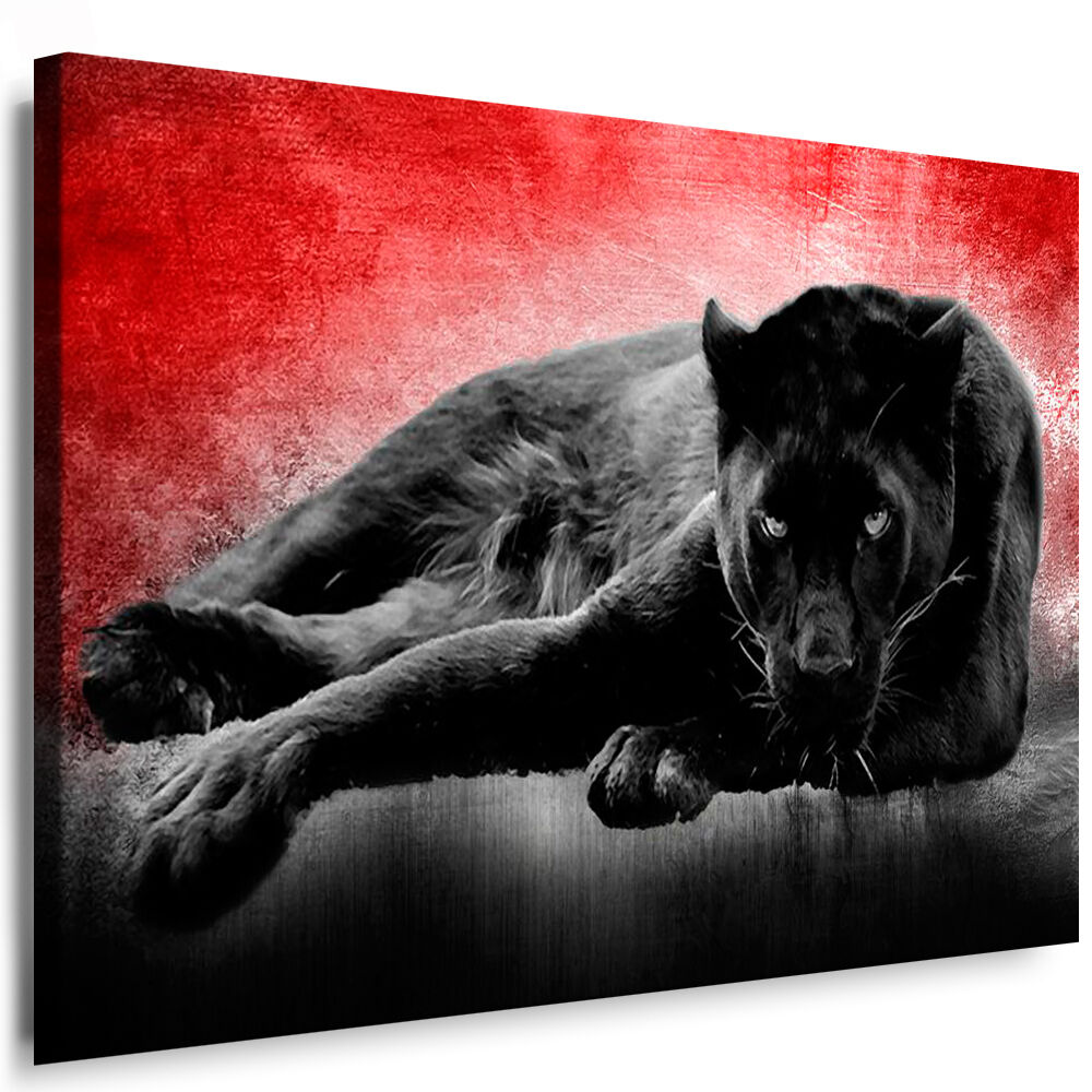 bild leinwand schwarzer panther n12 bilder mit keilrahmen kunstdruck kein poster ebay. Black Bedroom Furniture Sets. Home Design Ideas