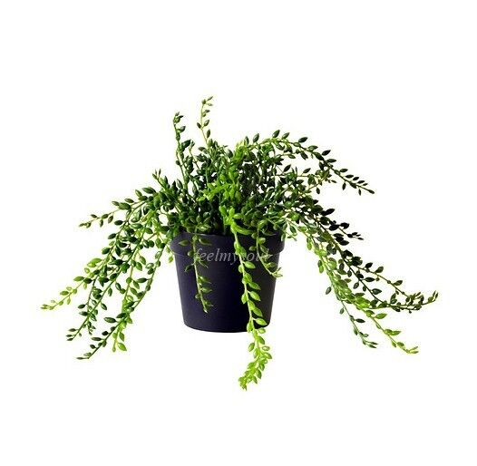 Ikea Artificial Trees: Ikea Artificial Plant Home Decor Succulent Brand New