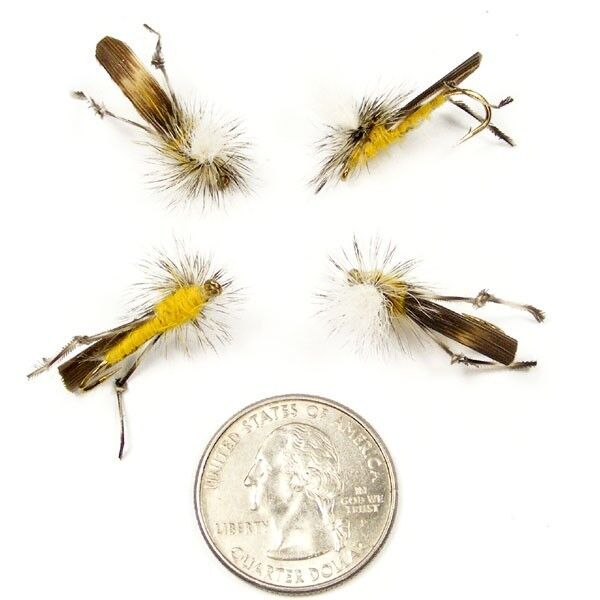 Parachute grasshopper fly fishing flies set of 4 size 10 for Fly fishing flies for bass