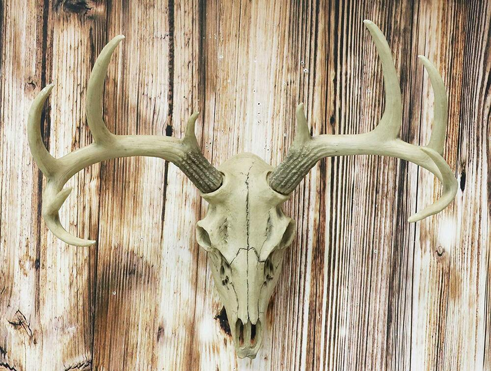 19 h antler skull buck deer head bust wall hanging for Antlers decoration