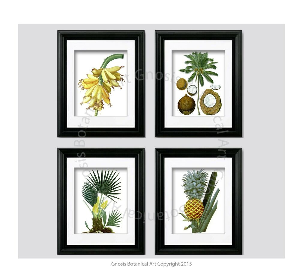 Tropical wall decor unframed wall art pineapple coconut for Art wall decoration