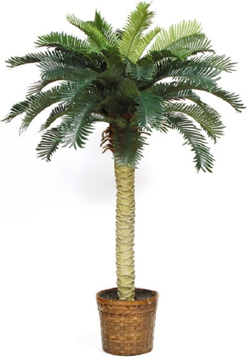 Silk Palm Tree 4 Foot Potted Indoor Outdoor Tropical Decor