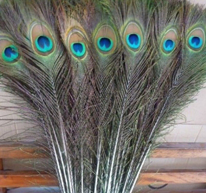 wholesale natural 100pcs peacock feathers eyes 16 18 wedding decoration ebay. Black Bedroom Furniture Sets. Home Design Ideas