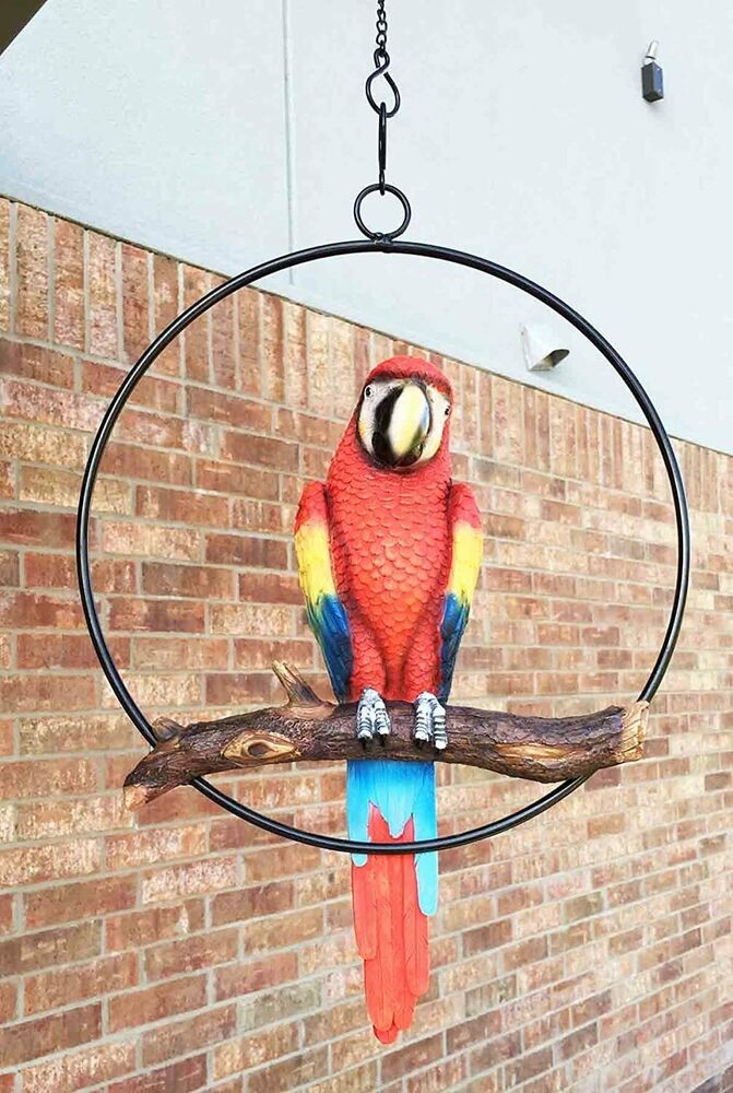 Scarlet macaw parrot bird perching on branch hanging patio for Outdoor hanging ornaments