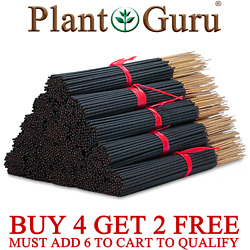 Kyпить Incense Sticks 100 Bulk Pack Hand Dipped Mix Match Wholesale CREATE LOT VARIETY на еВаy.соm