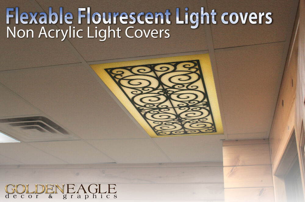 Photos Of Fluorescent Light Covers Office
