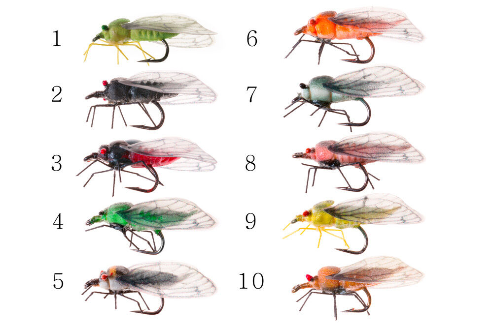 5 cicada realistic fly fishing lures ebay for Fly fishing lures