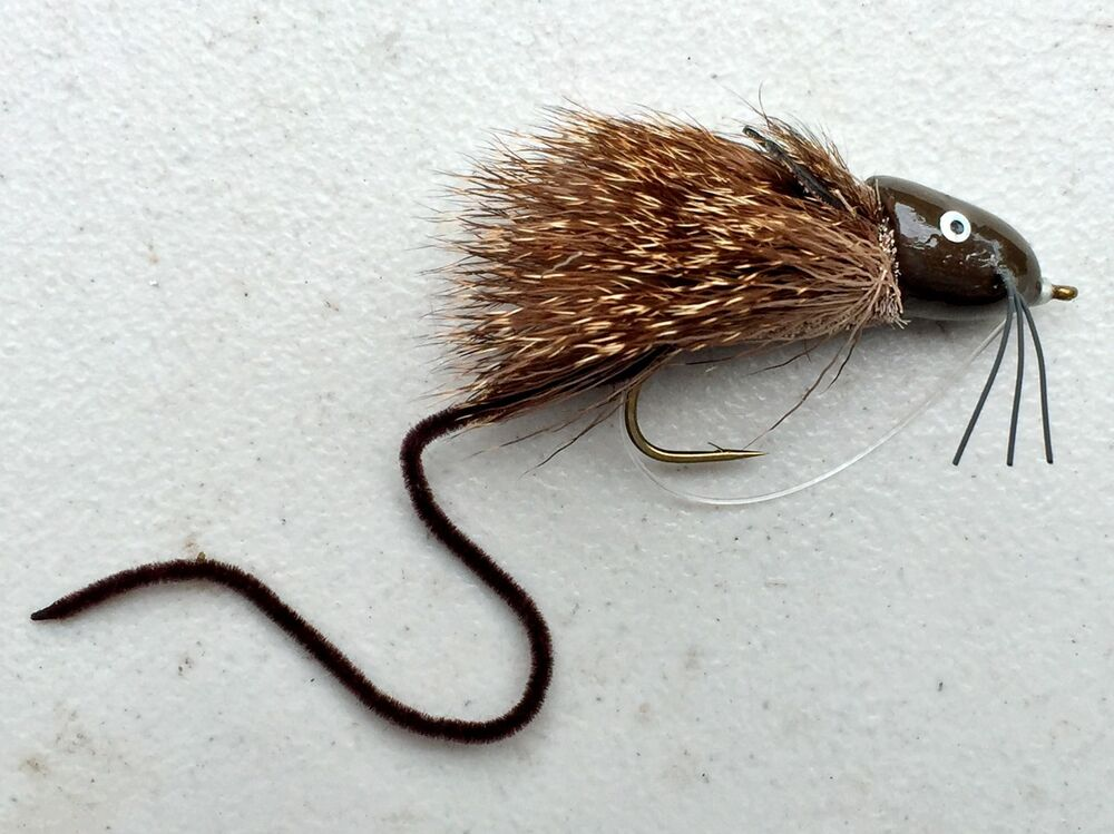 Freshwater fly fishing flies bass trout bream muskie for Fly fishing poppers