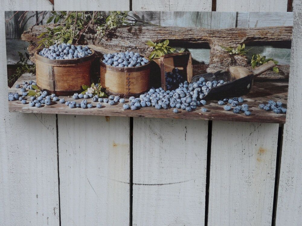 primitive style canvas print wall art farmhouse country home decor blueberries ebay. Black Bedroom Furniture Sets. Home Design Ideas