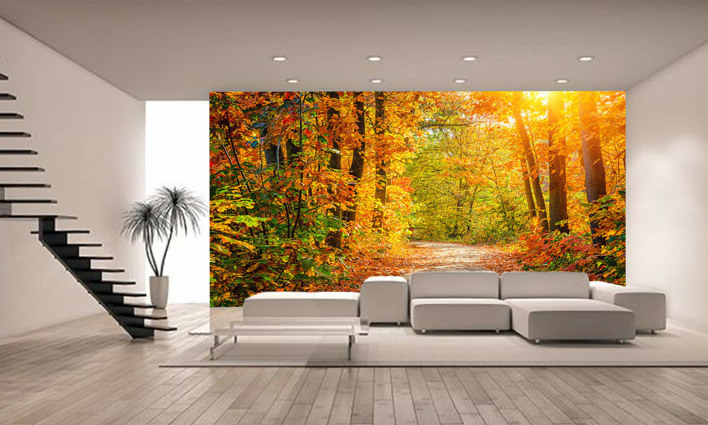 Autumn forest wall mural photo wallpaper giant wall decor for Cheap wall mural posters