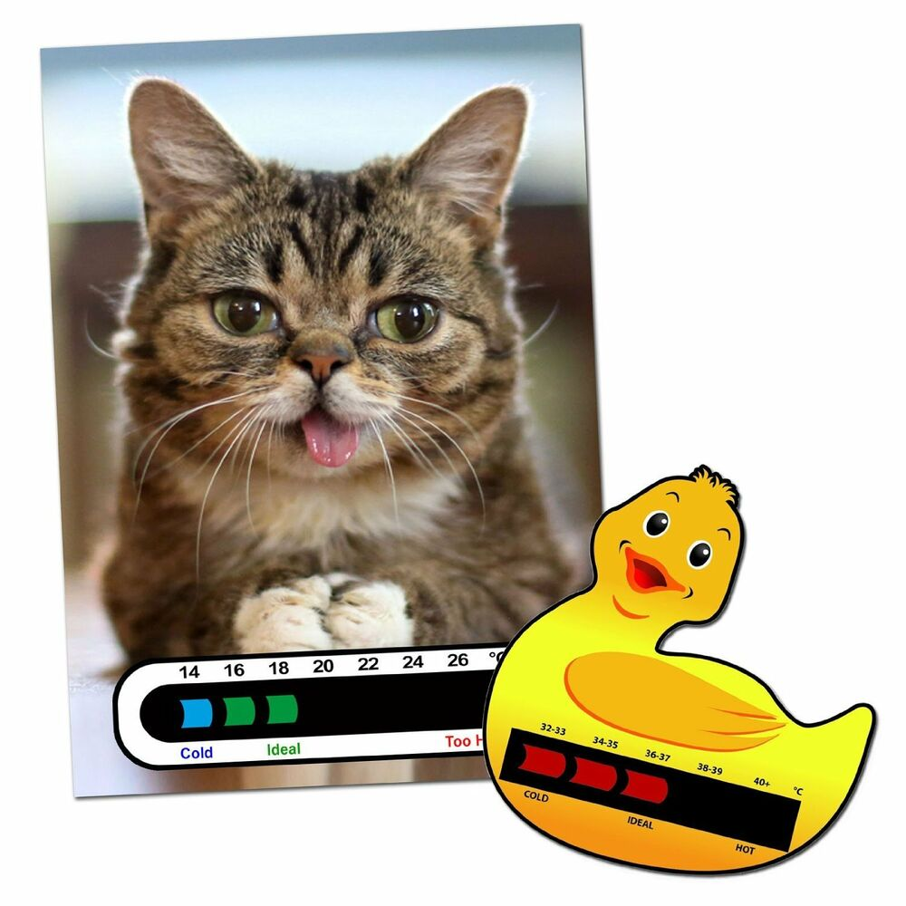 Baby & Child Thermometer Pack - Duck Baby Bath and Kitten Baby Room ...