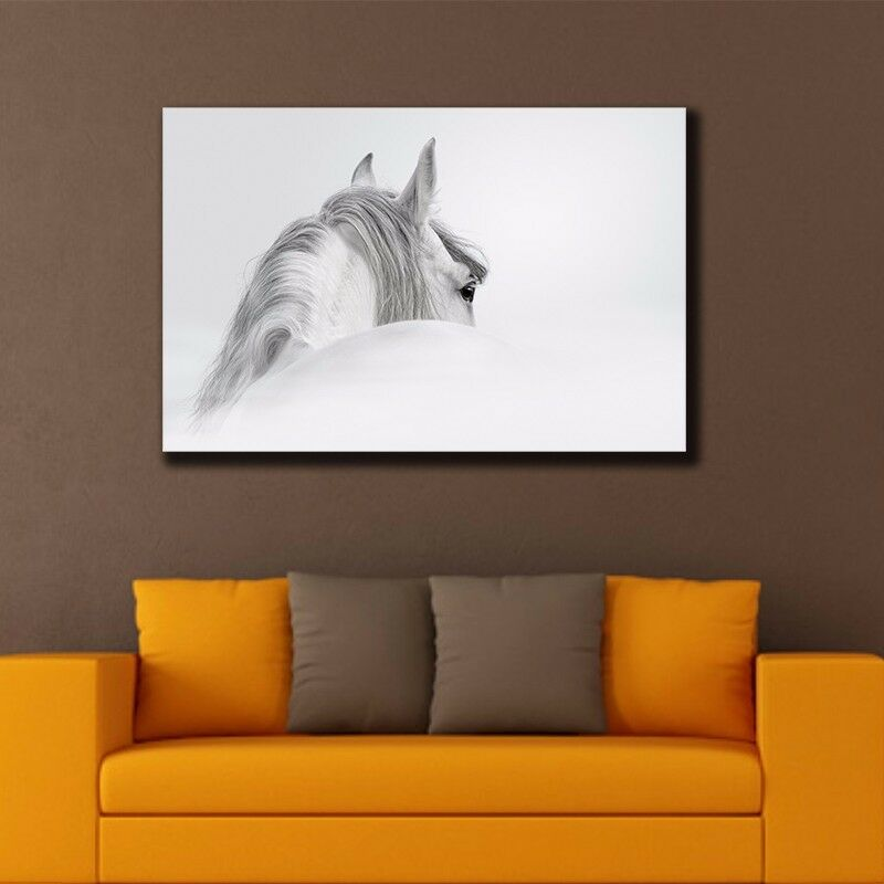 Horse stretched canvas prints framed hanging wall art Interiors by design canvas art