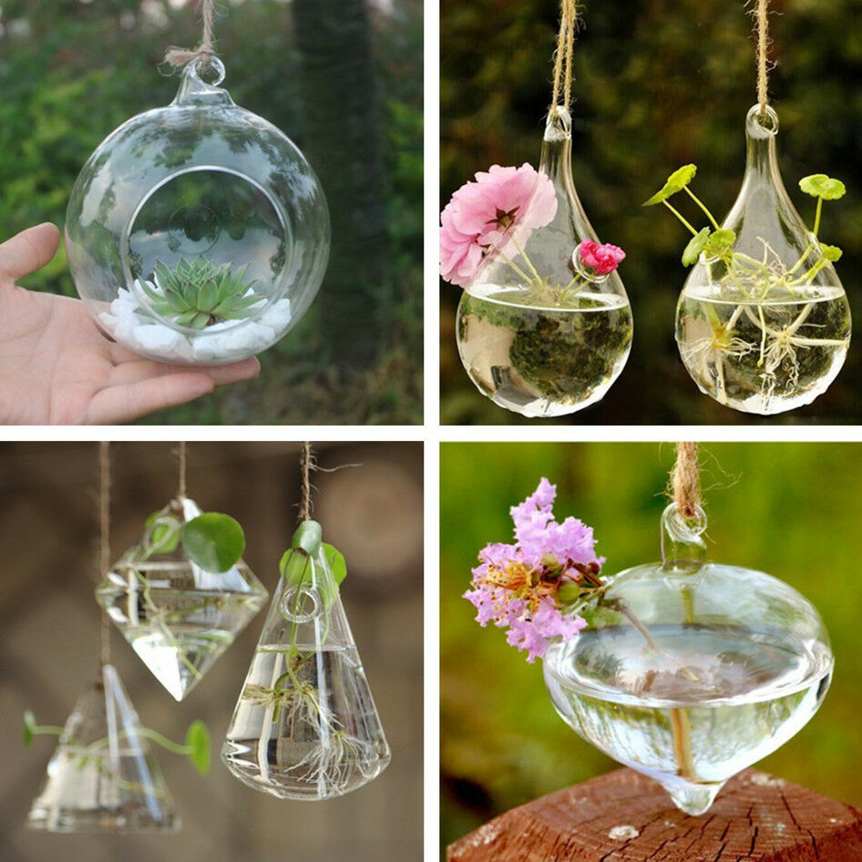 Luxury hanging glass flower plant vase terrarium container for Suspension decorative