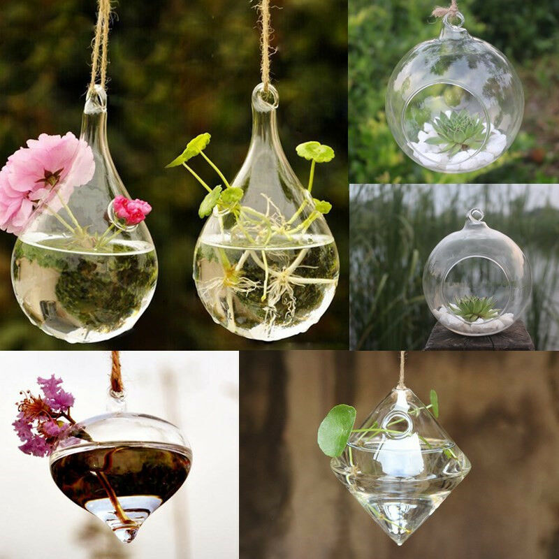 Fashion clear flower hanging vase planter terrarium for Glass home decor