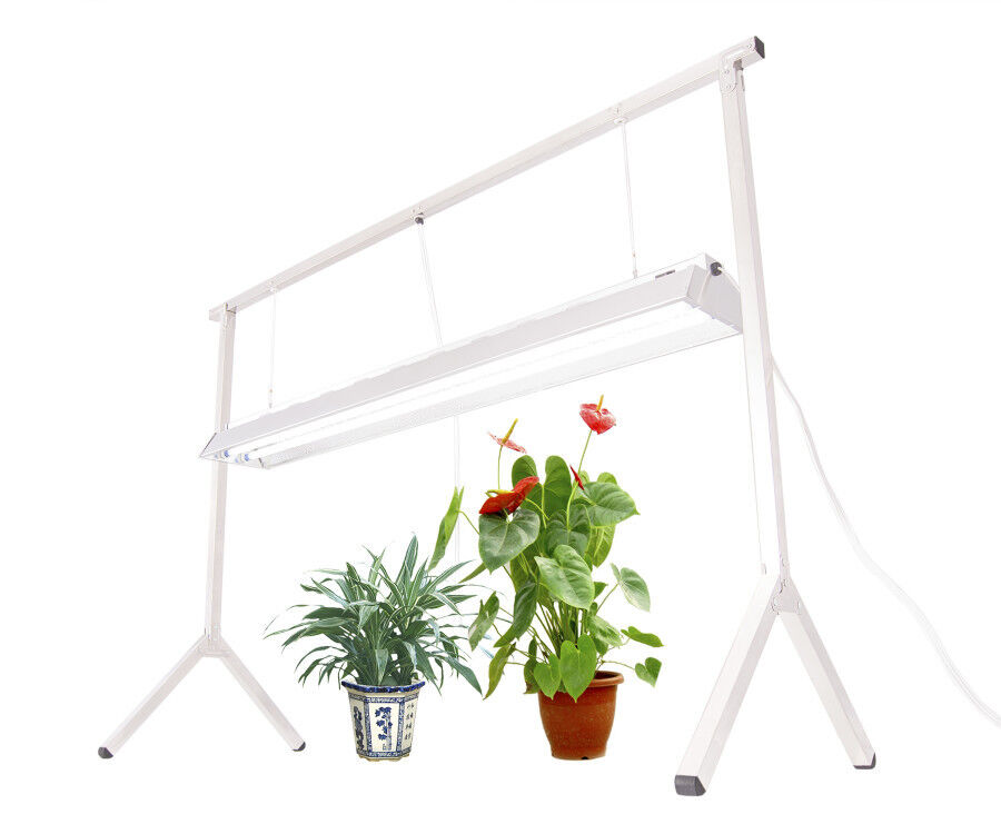 Fluorescent Light Delayed Start: PLANT STAND RACK DLS842 With 4' 2-BULB T5 GROW LIGHT