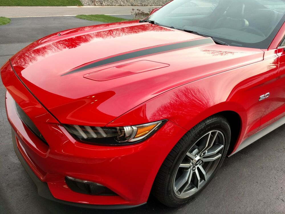 Gt350r For Sale >> Ford Mustang 2015, 2016, 2017 Custom Hood Decals - REALLY NICE! SALE PRICED! | eBay