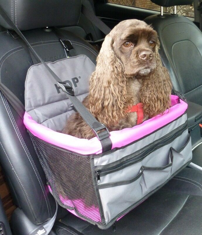 Booster Car Seats For Dogs Uk