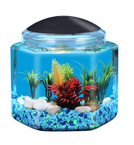 Api betta kit hex fish tank 1 gallon ebay for 2 gallon fish bowl