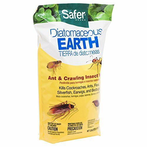 New 4 Lbs Diatomaceous Earth Bed Bug Powder Flea Insect