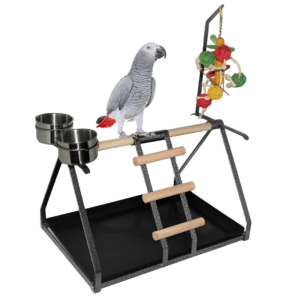 Parrot Bird Perch Table Top Stand Metal Wood 2 Cups Play