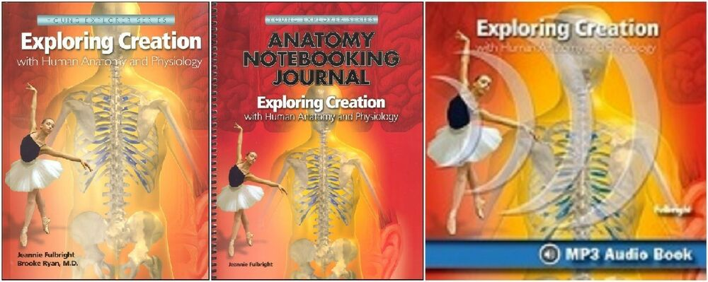 Young Explorers SET Exploring Creation with Human Anatomy Book ...