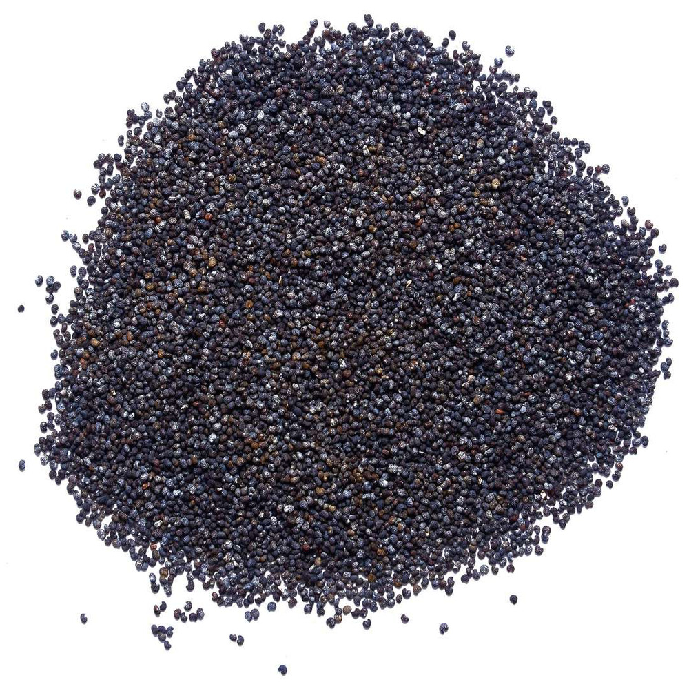 Unwashed poppy seeds england 5 pounds 2lb 1lb papaver somniferum unwashed poppy seeds england 5 pounds 2lb 1lb papaver somniferum poppies uk ebay mightylinksfo Image collections