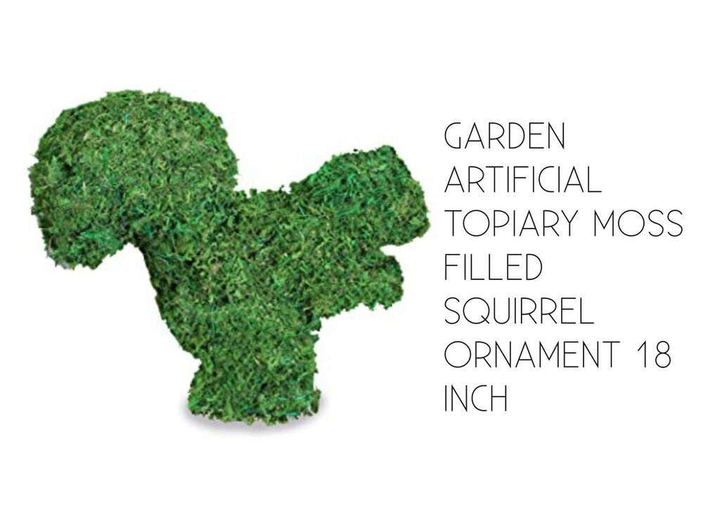 Garden Topiary Animal SQUIRREL Moss Filled Frame Ornament 18 Inch | eBay