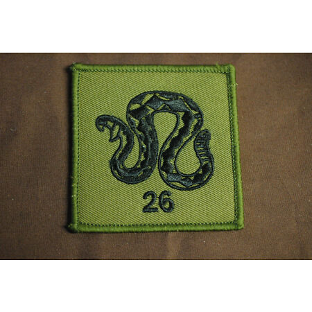 img-Royal Air Force - 26 Squadron - Subdued - Sew On Patch - No1321
