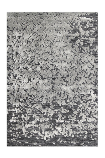 AllemagneArte Espina Shabby Tapis  Salon Tapis Gris Anthracite 120x180cm